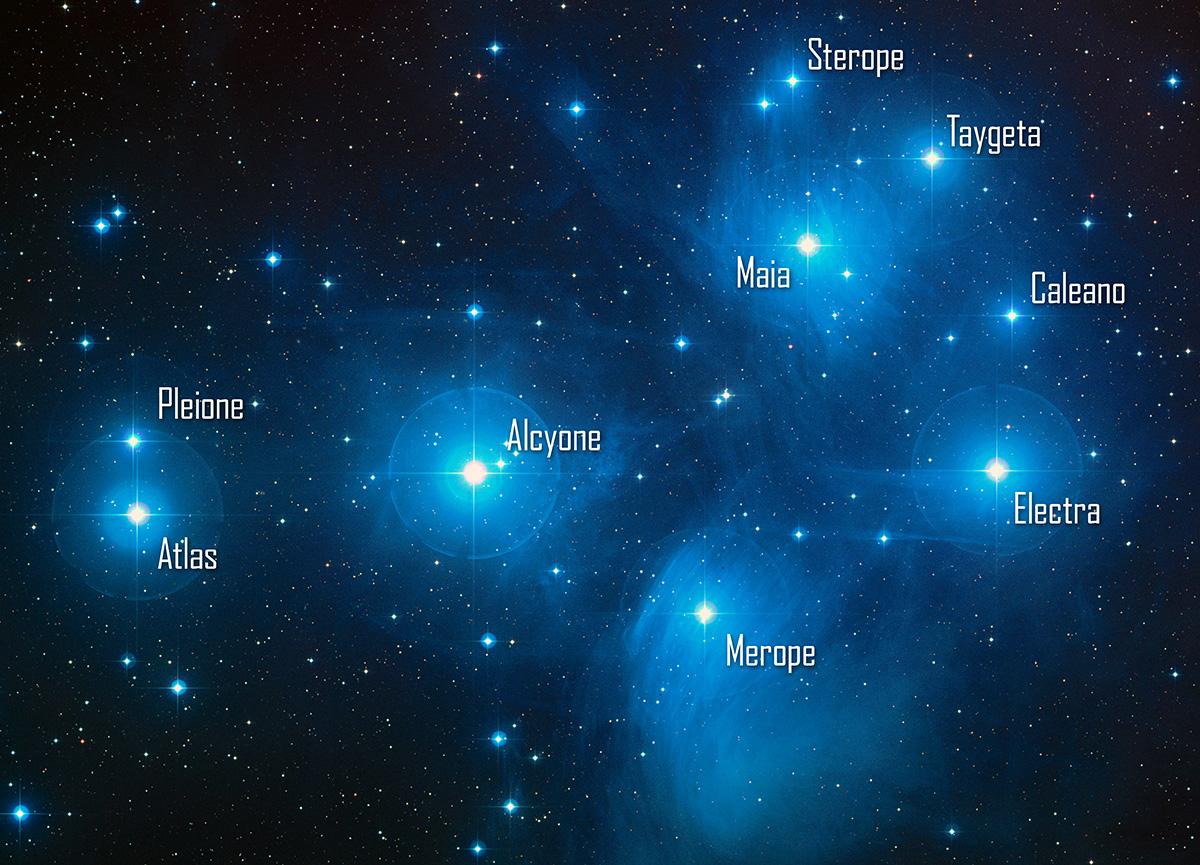 Les étoiles principales de l'amas des Pléiades