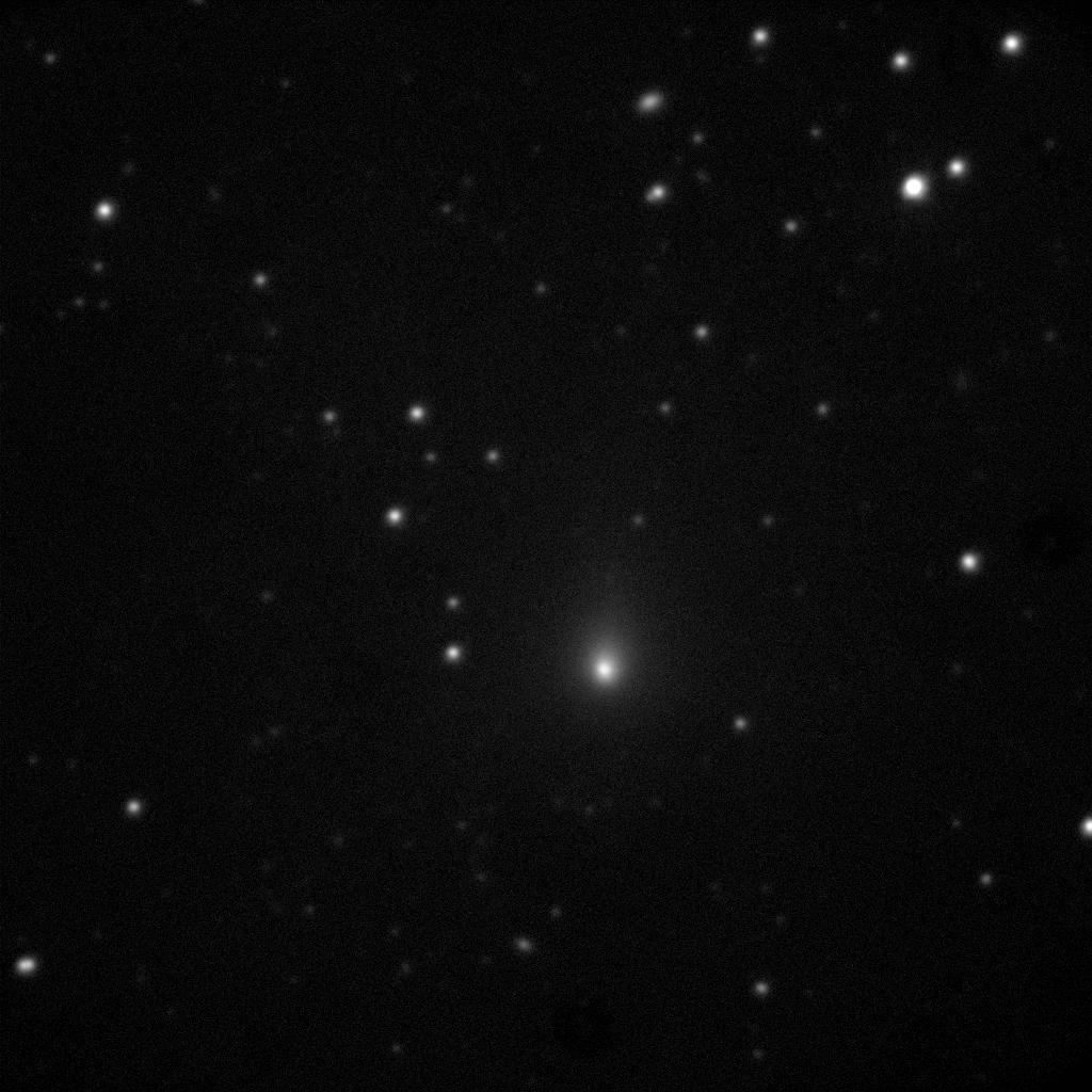 Observations de la comète C/2019 Y4 réalisées au télescope de 120cm de l'observatoire de Haute-Provence le 3 mars 2020. Neuf minutes séparent la première et la dernière image de l'animation