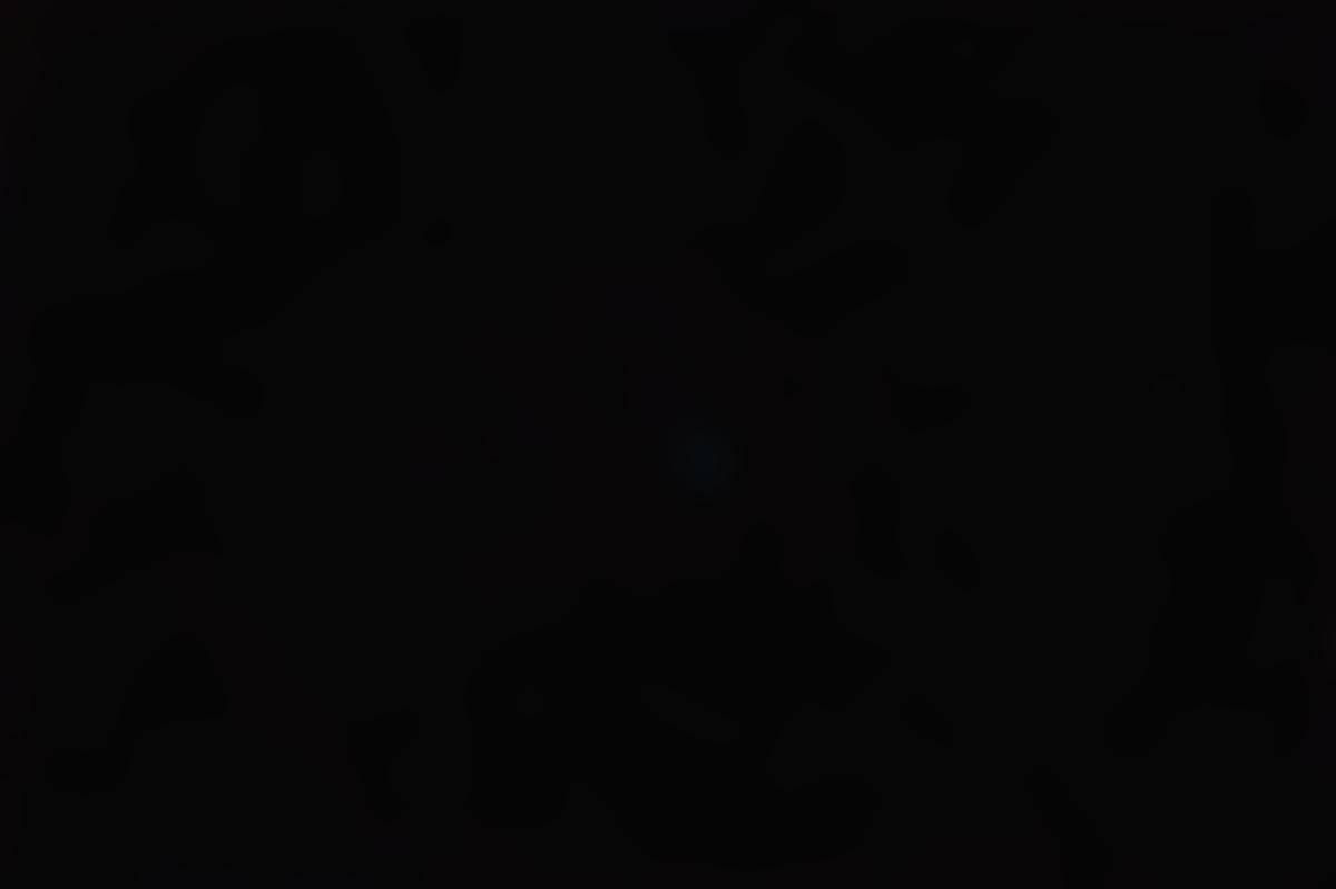 La comète C/2020F3 (NEOWISE) le 11août 2020 dans le ciel du Var, un mois après son passage proche du Soleil